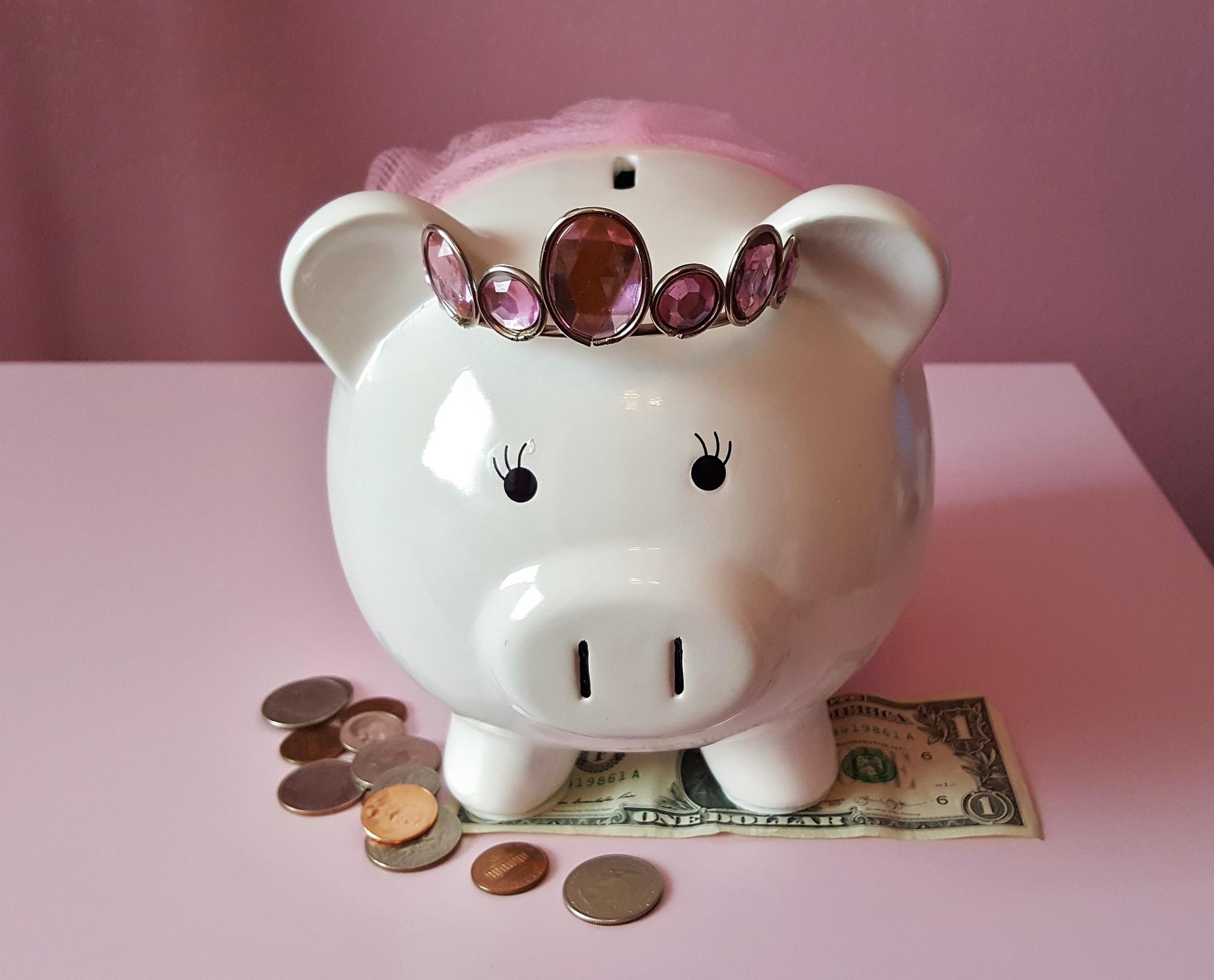 piggy-bank-1446874_1920(1)